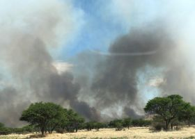 Firefighters battle to contain veld fire raging between Omeya and Groot Aub
